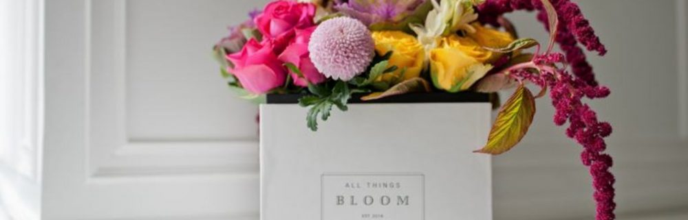 Things to bloom